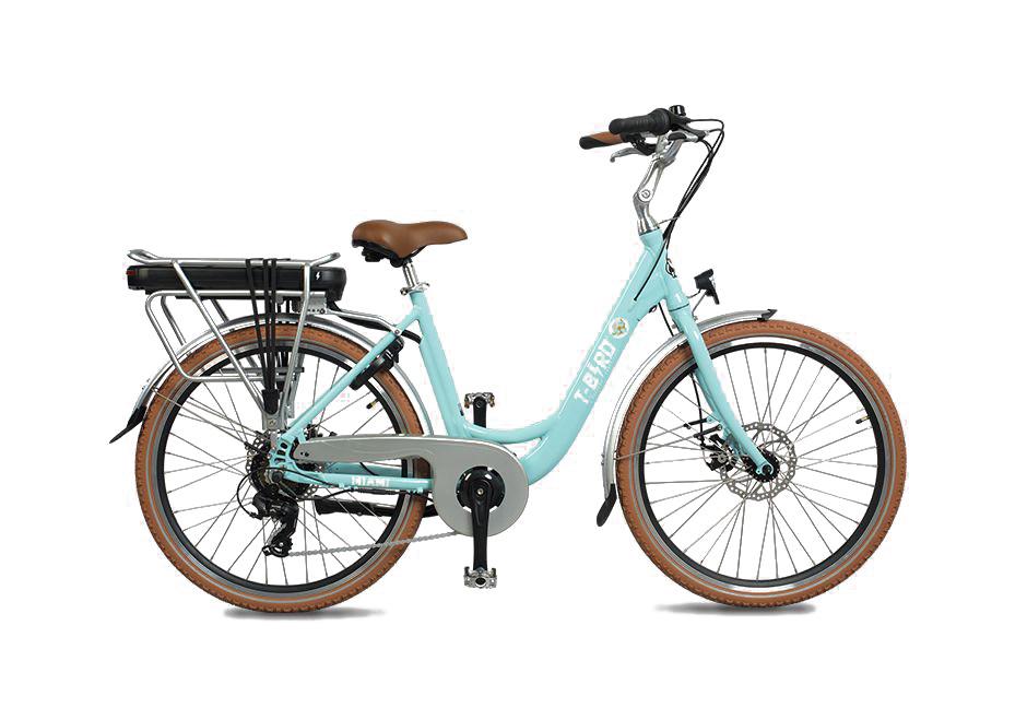 Bike-Love-location-vente-réparation-vélos-électrique-T-BIRD-Six-Fours-Le-Brusc-VAR-83